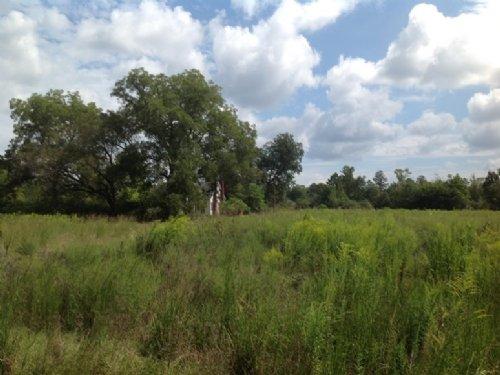 Sardis Tract : Sardis : Dallas County : Alabama