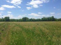 Douglas County Elkhorn River Fronta