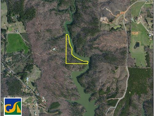 67-043 Dismal Creek : Arley : Winston County : Alabama