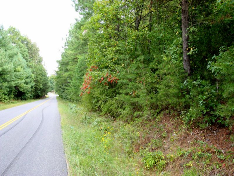 10.33 Acre Wooded Lot In Woodford : Woodford : Caroline County : Virginia