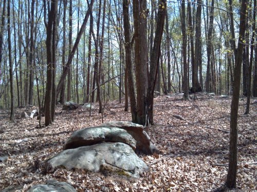 Large Acreage Millsville Ln : Danville : Pittsylvania County : Virginia