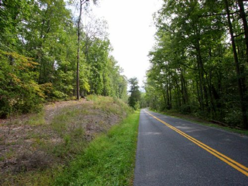 8.46 Wooded Acres With Pond : Woodford : Caroline County : Virginia