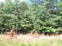 27.3 Wooded Acres