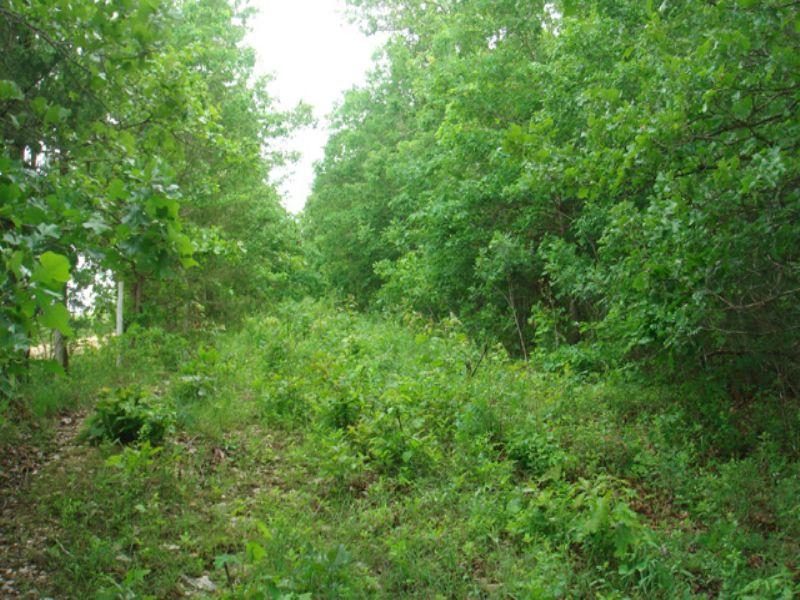 5 Acres Whispering Oaks Ranch.terms : Houston : Texas County : Missouri