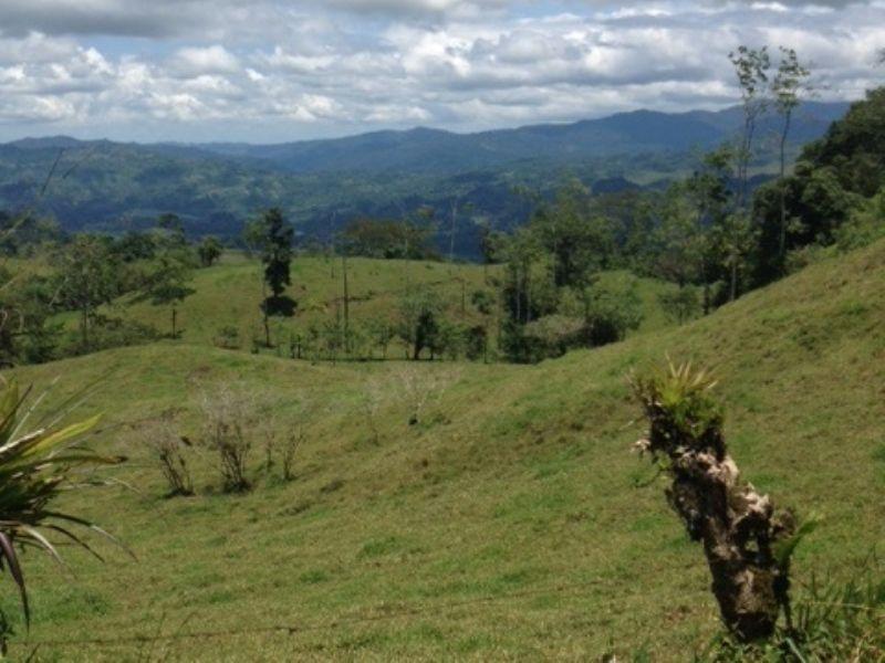Drastically Reduced 16.5 Ac. Farm : Turrialba : Costa Rica