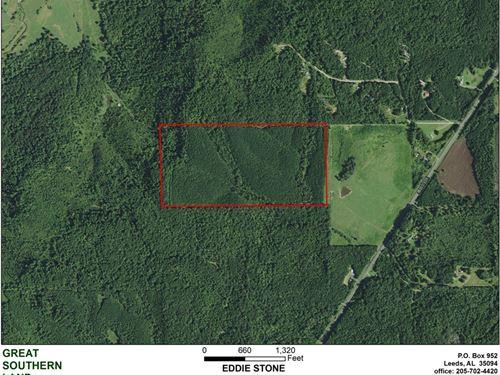 8-032 Big Spring Creek : Blountsville : Blount County : Alabama