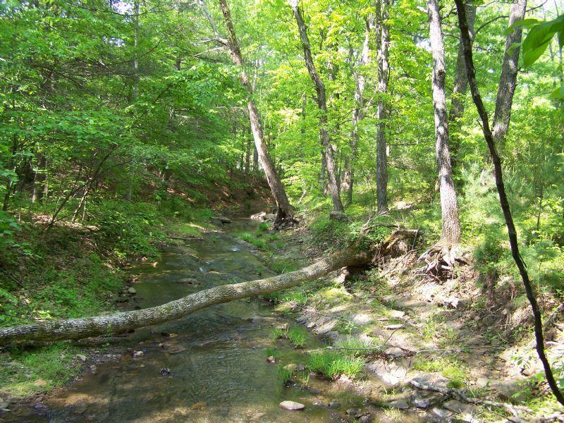 Large Acreage - Bradshaw Rd : New Castle : Roanoke County : Virginia
