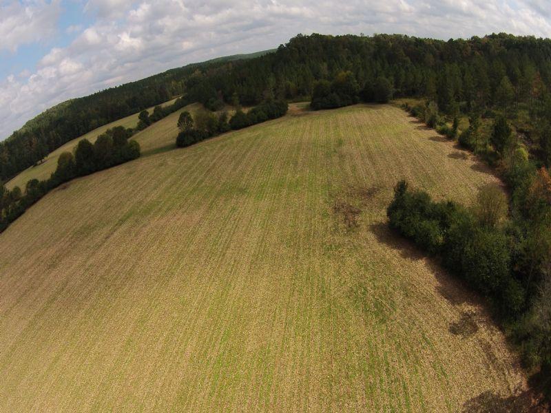 Hunt, Farm, 108 Acres : Cedartown : Polk County : Georgia