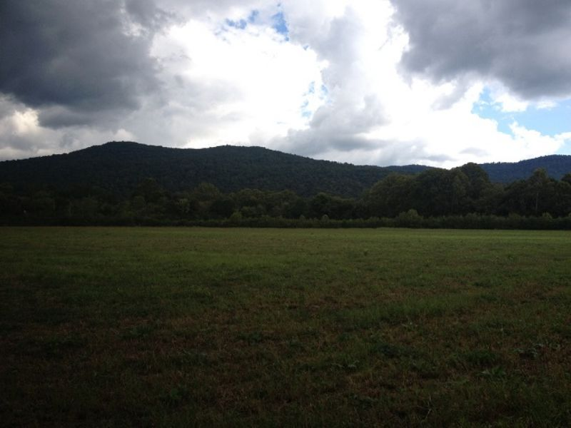 19 Acres Pasture Land W/ Creek : South Pittsburg : Marion County : Tennessee