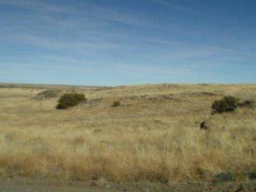 13.33 Acres Land For Sale : St. Johns : Apache County : Arizona