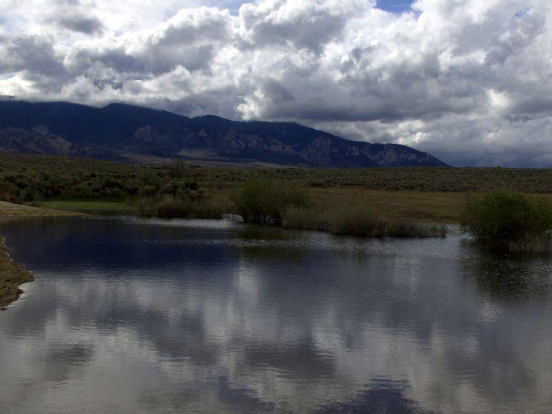 Seasonal Pond Bordering Public Land : Belfry : Carbon County : Montana