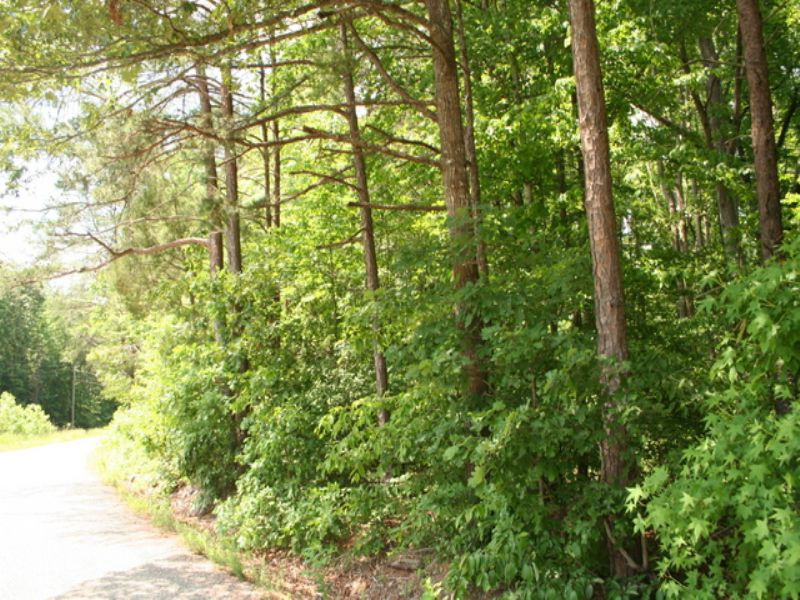 10 Wooded Acres On Nichols Rd : Powhatan : Powhatan County : Virginia