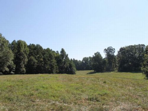 25+/- Acres For Sale : Woodland : Randolph County : Alabama