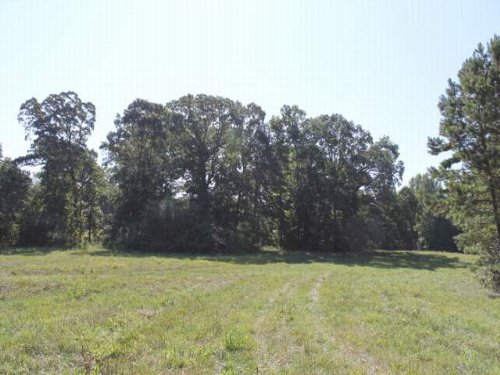 44.5+/- Acres : Woodland : Randolph County : Alabama
