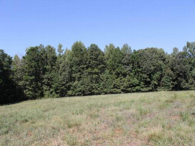 59.5+/- Acres : Woodland : Randolph County : Alabama