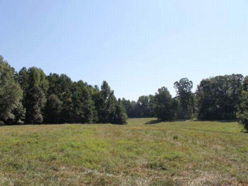104+/- Acres : Woodland : Randolph County : Alabama