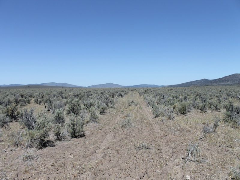 49 Acre Ranch Northern California : Termo : Lassen County : California