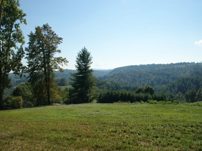 37.709 Acres On Country Dirt Road : Independence : Grayson County : Virginia