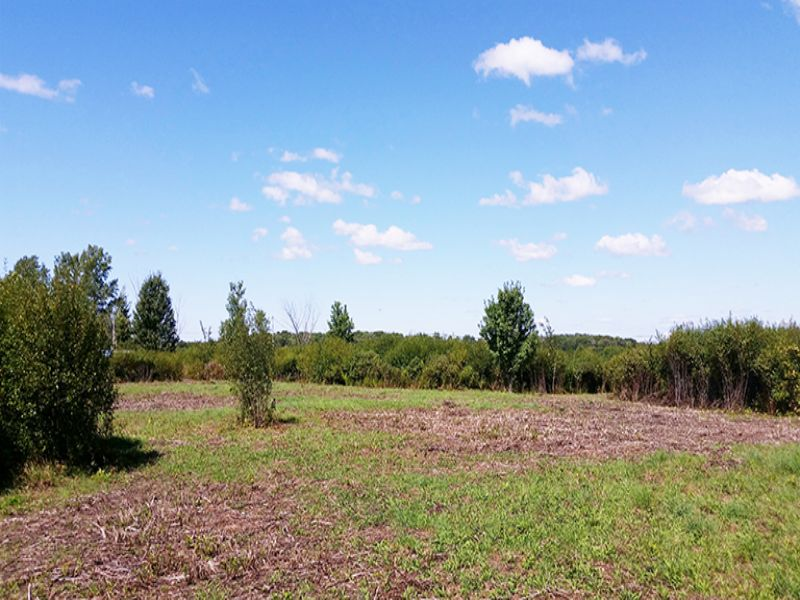 New York Land With Owner Financing : Richland : Oswego County : New York