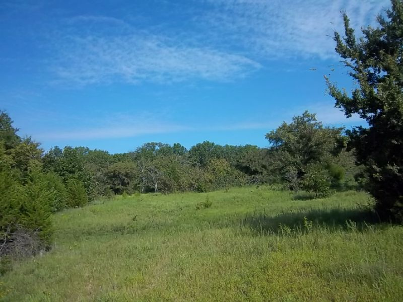 East Tree 40 : Mason : Okfuskee County : Oklahoma