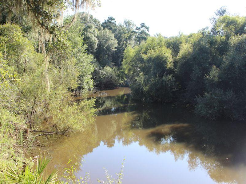Roddenbery's Riverbend : Beachton : Grady County : Georgia
