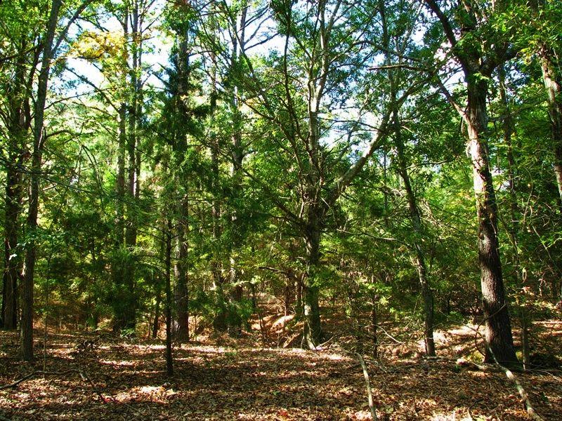 County Line 35 : Antlers : Pushmataha County : Oklahoma