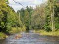 One Mile Of Deer River Frontage