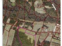 Great Farm Land : Wallace : Duplin County : North Carolina