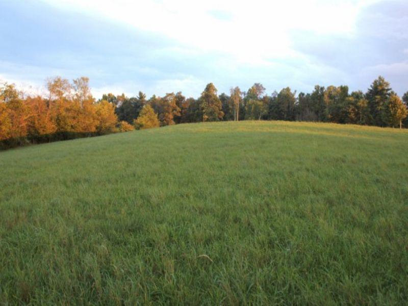 Joins Blue Ridge Parkway : Galax : Carroll County : Virginia