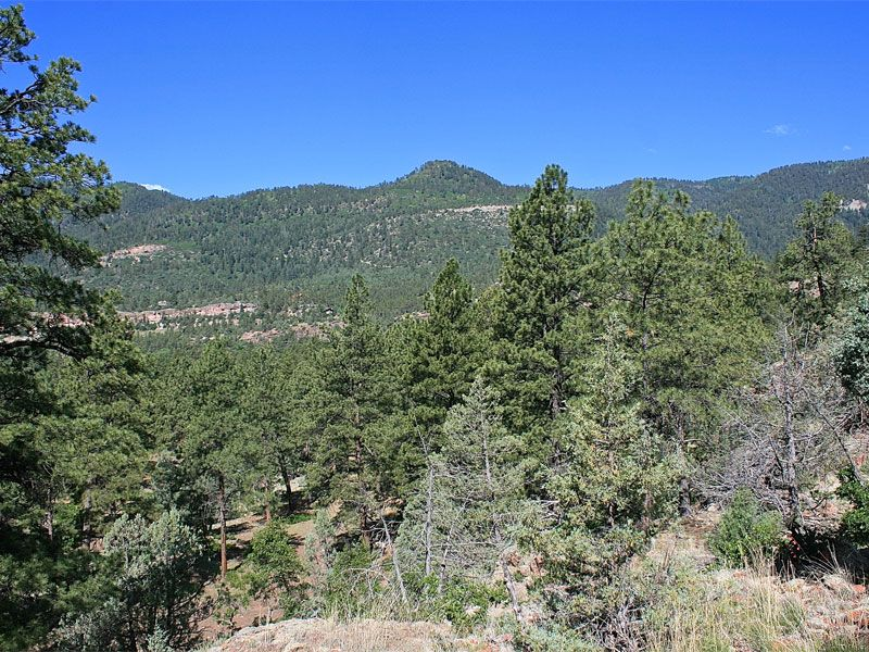 Painter Ranch Lot 8 : Durango : La Plata County : Colorado