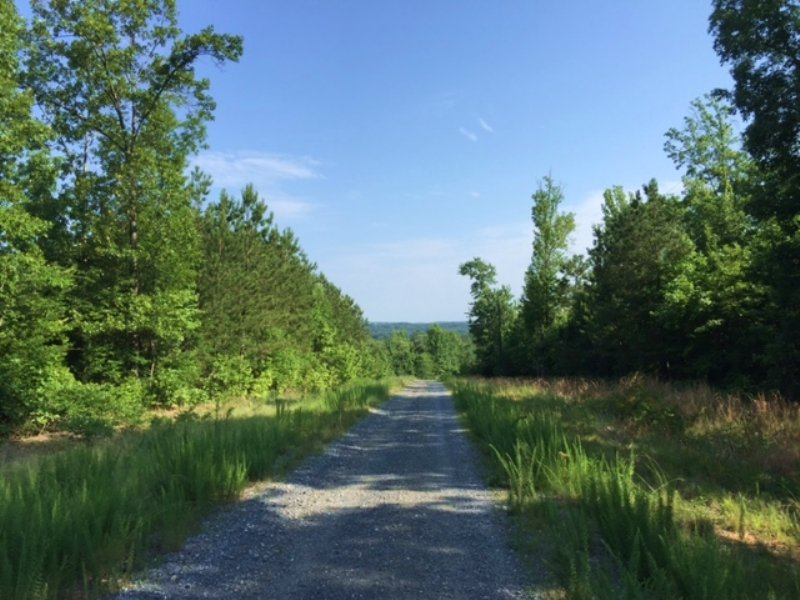 149.5+- Acres Bank Owned Wooded : Rome : Floyd County : Georgia