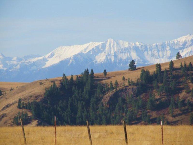Pocket Ranch : Joseph : Wallowa County : Oregon