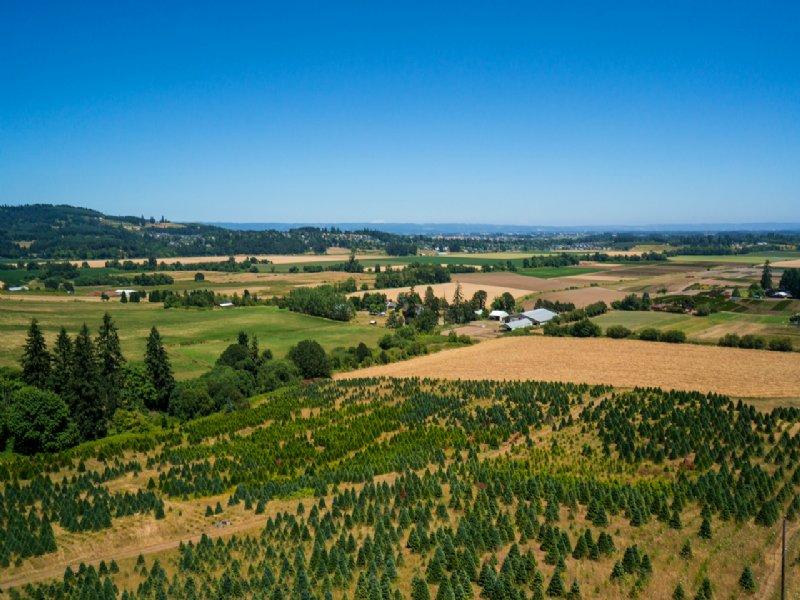 Easterday rd : Forest Grove : Washington County : Oregon