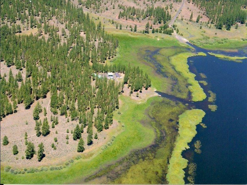 Dog Lake Paradise : Lakeview : Lake County : Oregon