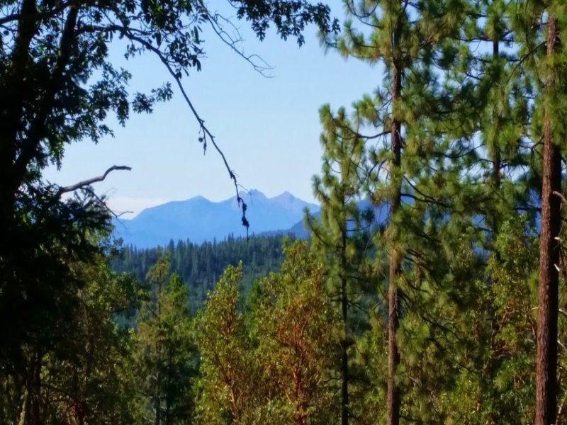 Arrowhead Pass 80 : Jacksonville : Jackson County : Oregon