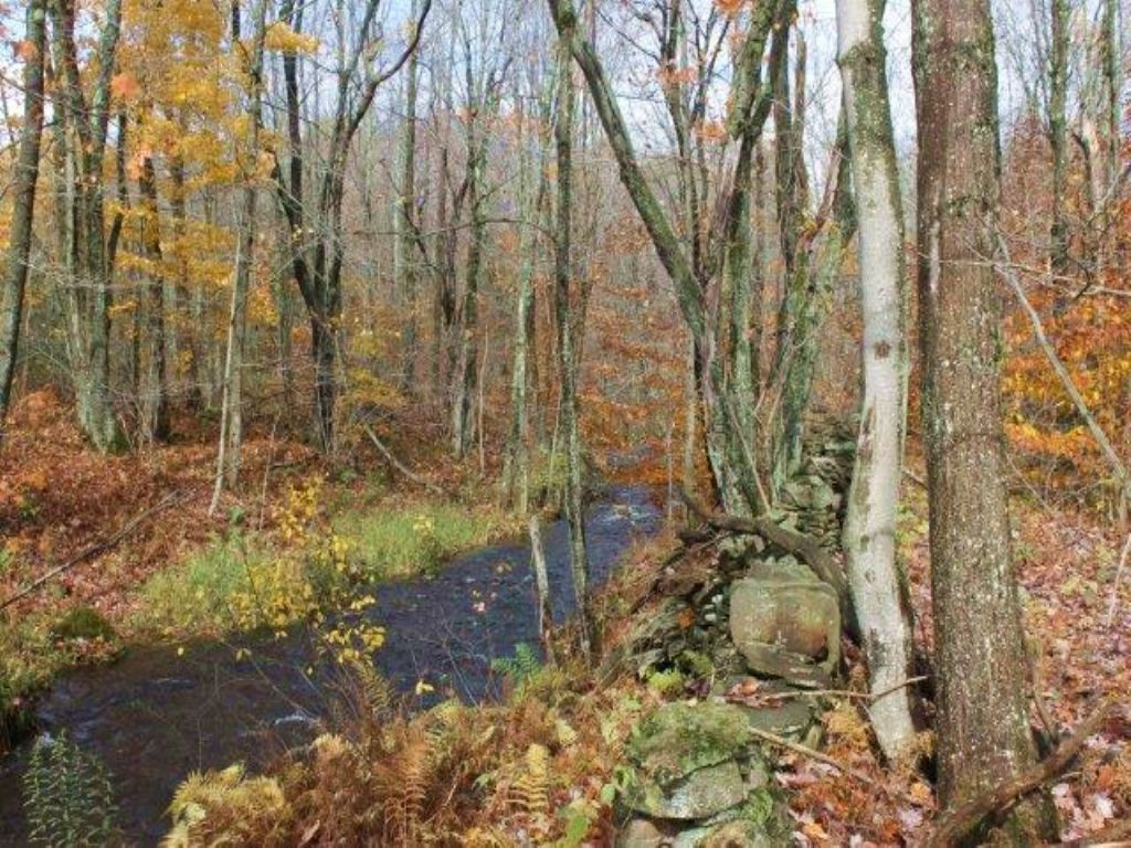 Owner Financing 7 Acres Stream : Annsville : Oneida County : New York
