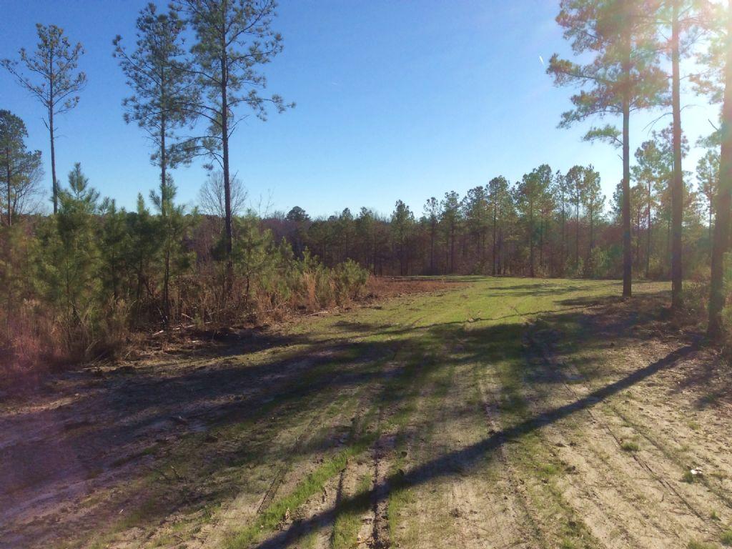 *sold* 28.57 Acres : Camden : Kershaw County : South Carolina