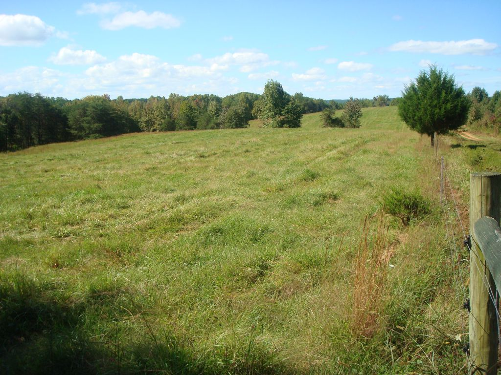 113.14 Acres Of Beautiful Farm Land : Vernon Hill : Halifax County : Virginia