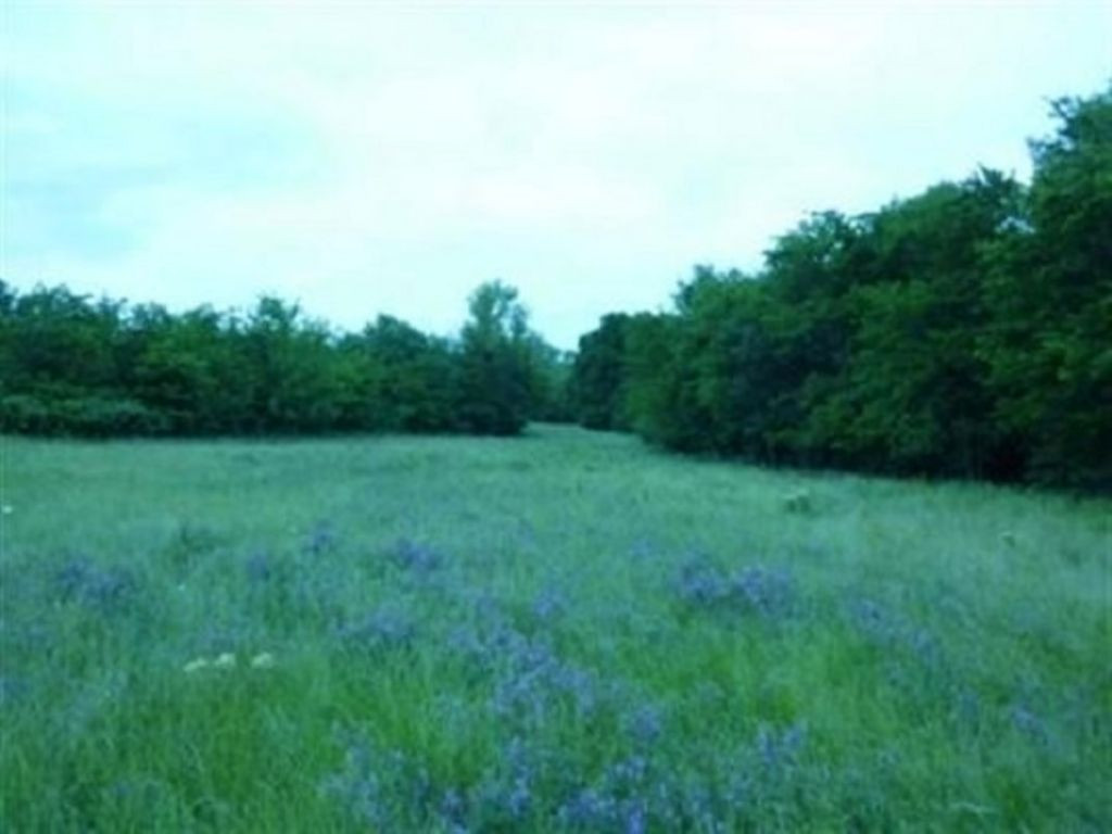 Recreational Land For Sale In Ne Tx : Cooper : Delta County : Texas
