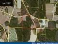 Georgia Land Auction Sparks - 1007