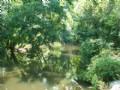 Brier Creek Ranch