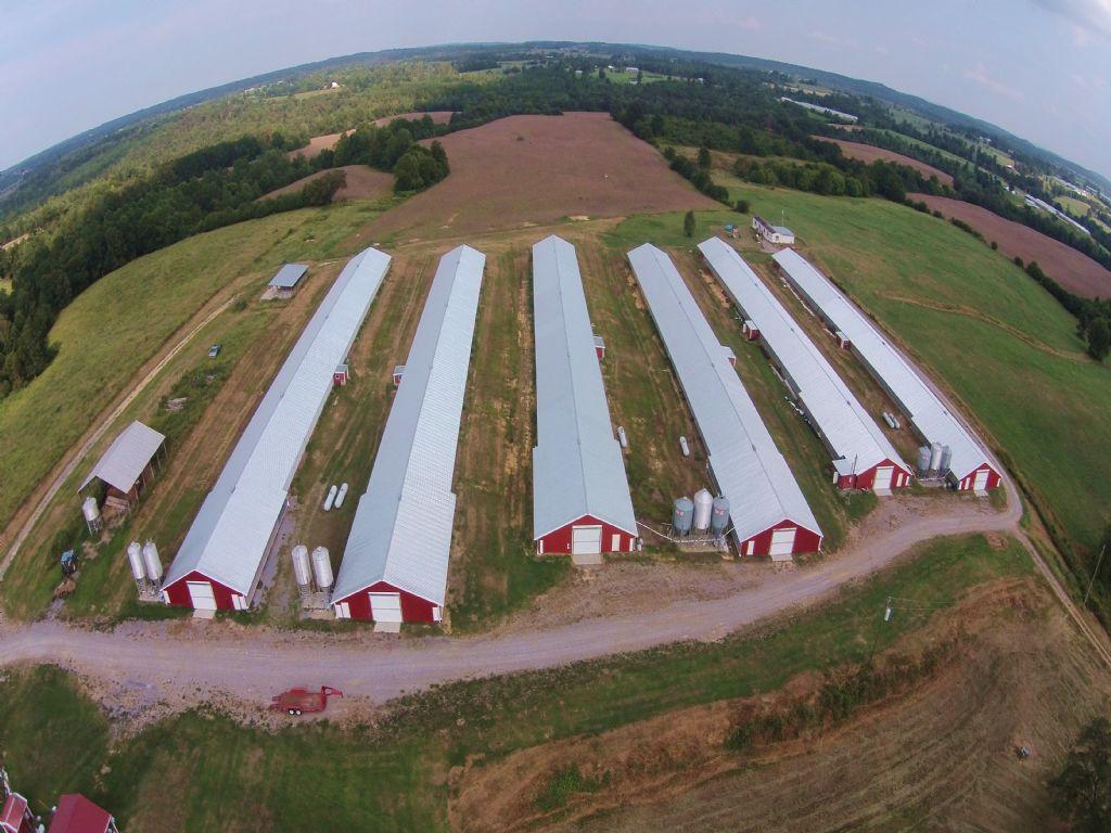 Six House Poultry Farm : Cullman : Cullman County : Alabama