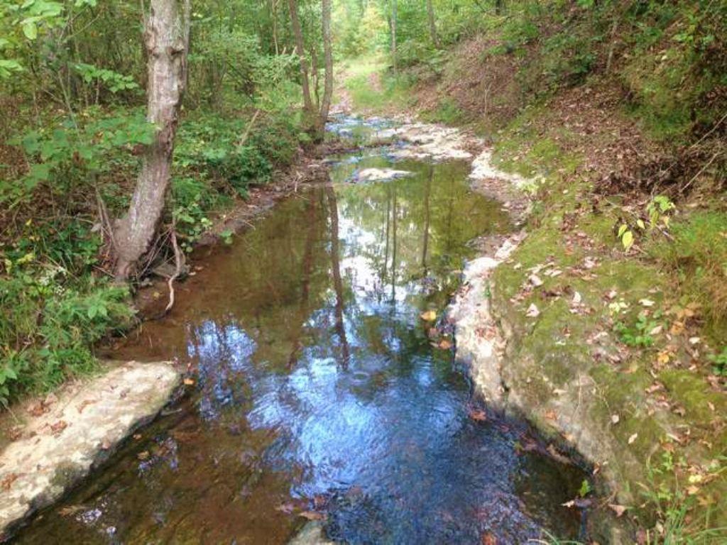 Hardwood Tract With Waterfall : Buchanan : Polk County : Georgia