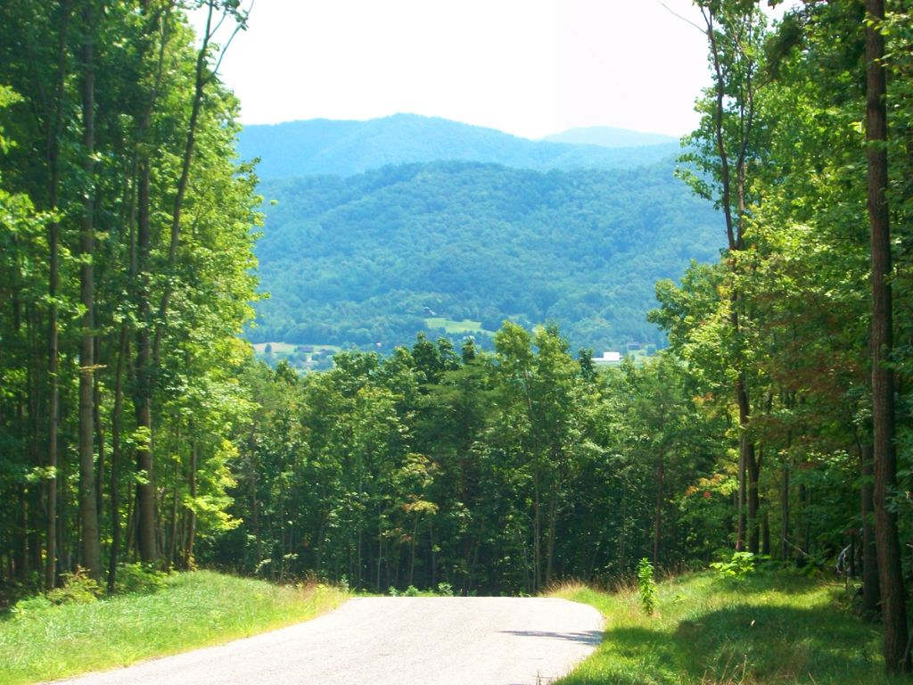 4 Estate Or Development Tracts : Nellysford : Nelson County : Virginia