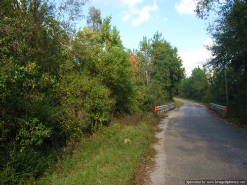 5 Acre Home Site In Poplarville : Poplarville : Pearl River County : Mississippi