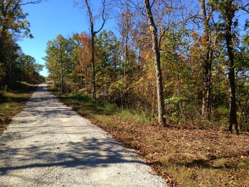 $500 Down For 8 Acres W/ Electric : Mansfield : Wright County : Missouri