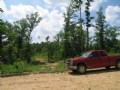 4 Acres Bordering National Forest
