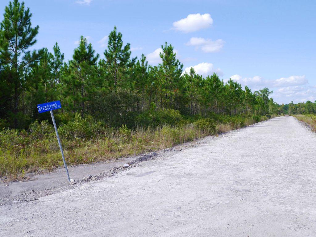 Pine Ridge Parcel : Callahan : Nassau County : Florida