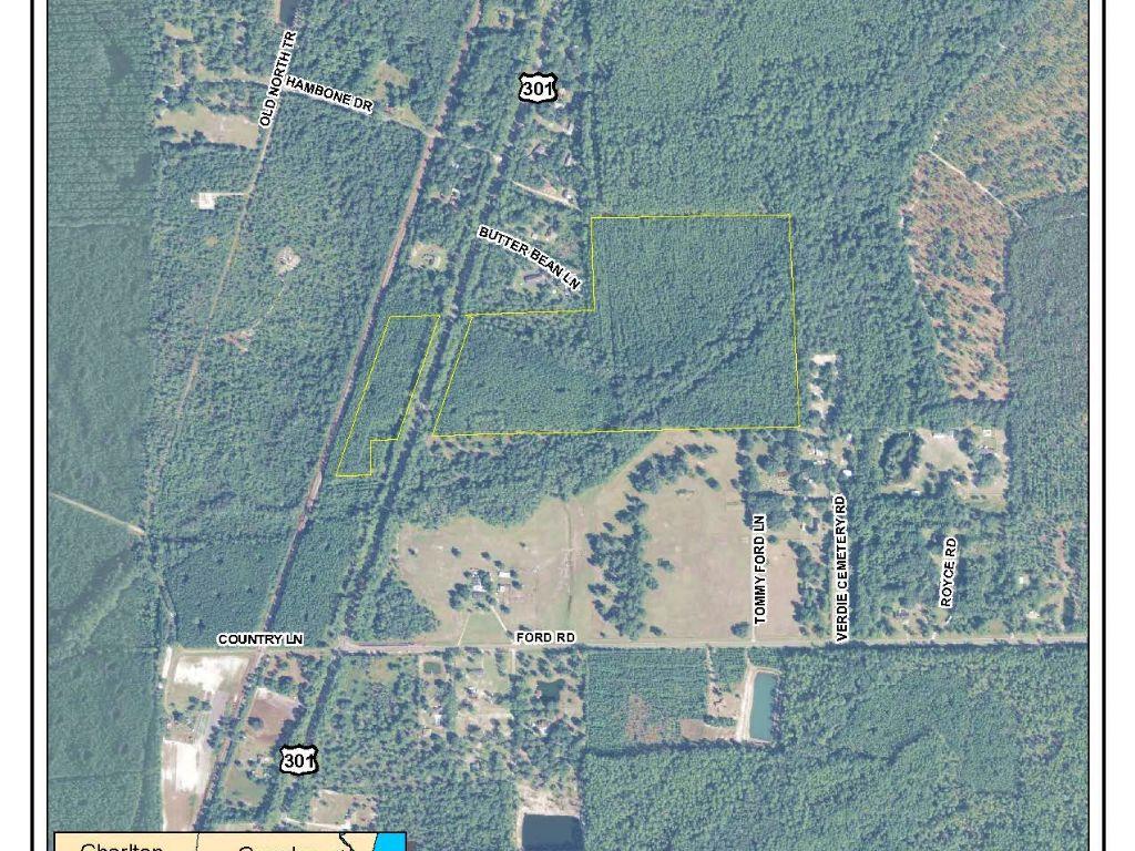Verdie Woods Parcel : Bryceville : Nassau County : Florida