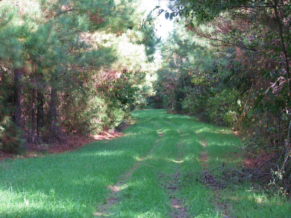 Peterman 60 : Monroeville : Monroe County : Alabama